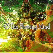 43 The Flowing Mind von Lullabies for Deep Meditation