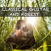 Classical Guitar and Forest by Guitar