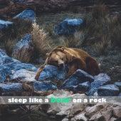 Sleep Like a Bear on a Rock by Sleep Sound Library