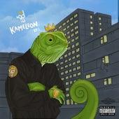 Kameleon EP 1 by Koder