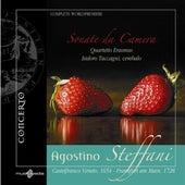 Steffani, A.: Chamber Sonatas Nos. 1-6 von Isidoro Taccagni
