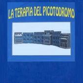 La Terapia del Picotodromo by Various Artists