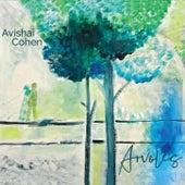 Arvoles van Avishai Cohen (bass)
