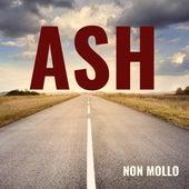 Non mollo von Ash
