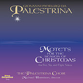 Motets for the Season of Christmas by The Palestrina Choir