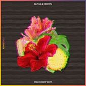 You Know Why by Alpha