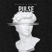 Pulse by Bedrud