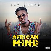 African Mind de Jay Mindz