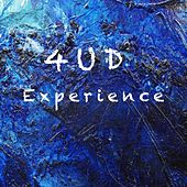 Experience di 4ud