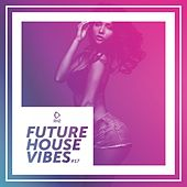 Future House Vibes, Vol. 17 by Various Artists