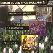 Guitarsound From Holland vol. 2 by Various Artists