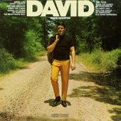 David von David Houston