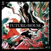 Future/House #12 de Various Artists