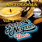 Antología Vol. 1 de Tiberio Y Sus Gatos Negros