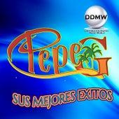 Sus Mejores Exitos by Pepe G