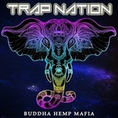 Money on My Mind von Trapnation