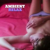 Ambient Relax, Vol. 1 von Various Artists