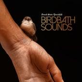 Birdbath Sounds von Bird Sounds