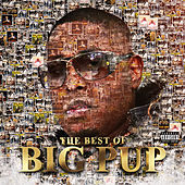 The Best of Big Pup de Big Pup