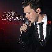 Tal Vez, Quizá by David Cavazos