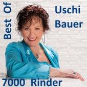 Best Of Uschi Bauer: 7000 Rinder de Uschi Bauer