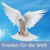 Frieden für die Welt de Various Artists