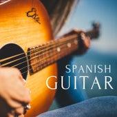 Spanish Guitar Music de Various Artists