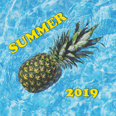 Summer 2019 di Various Artists