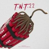 T.N.T.22 by Peter Pan