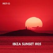 Ibiza Sunset, Vol. 05 von Various Artists