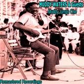 Muddy Jumps One de Various Artists