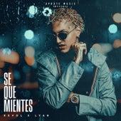 Se Que Mientes by Revol