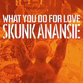 What You Do for Love de Skunk Anansie