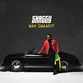 Wah Gwaan?! by Shaggy