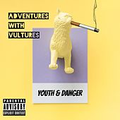 Youth & Danger by The Adventures