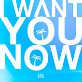 I Want You Now van FÄIS