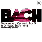 Bach: Brandenburg Concerto No. 3 in G major, BWV 1048 by Herbert Waltl