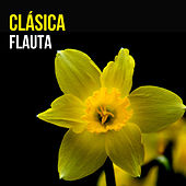 Flauta Clásica de Various Artists