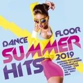 Dancefloor Summer Hits 2019 de Various Artists