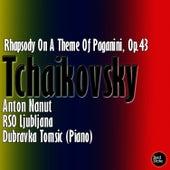 Rachmaninov: Rhapsody On A Theme Of Paganini, Op.43 by Anton Nanut