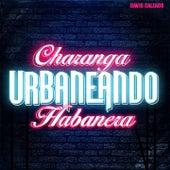 Traicionera de Charanga Habanera