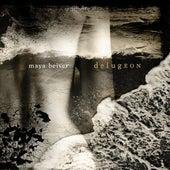 Slow Seasons: Summer. Adagio (Recomposed by Maya Beiser) de Maya Beiser