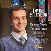 Divine Splendor de Various Artists
