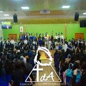 Escuelas Dominicales, Junio 2019 (En Vivo) de Tabernáculo de Adoración