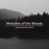 Melodies of the Woods de Nature Sounds Artists