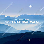 Soft Natural Calm de Sounds Of Nature