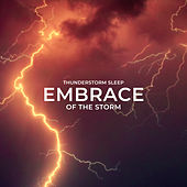 Embrace of the Storm de Thunderstorm Sleep