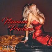 Niamam Prichina by Andrea