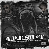 A.P.E SH*T (Artist, Producer, & Engineer Sh*t) by Malachi