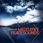 Meditative Peace Sounds de Meditative Mind